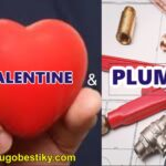 VALENTINE AND PLUMBERS 3