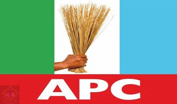 Governorship Election