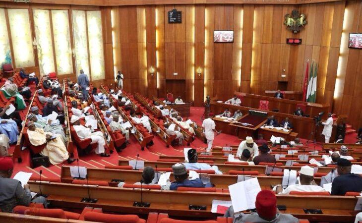 Senate calls on Buhari to address ENDSARS Protesters