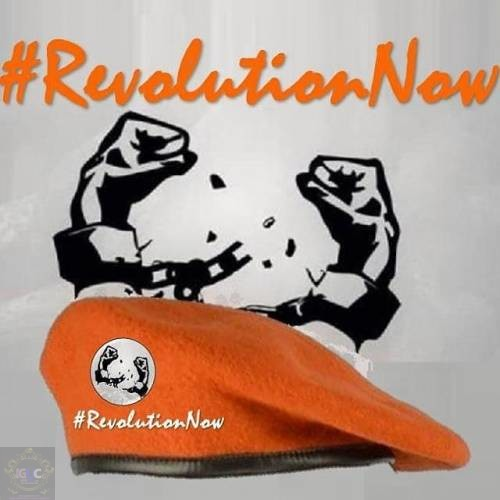 Revolution Now Protest to Resume August 19