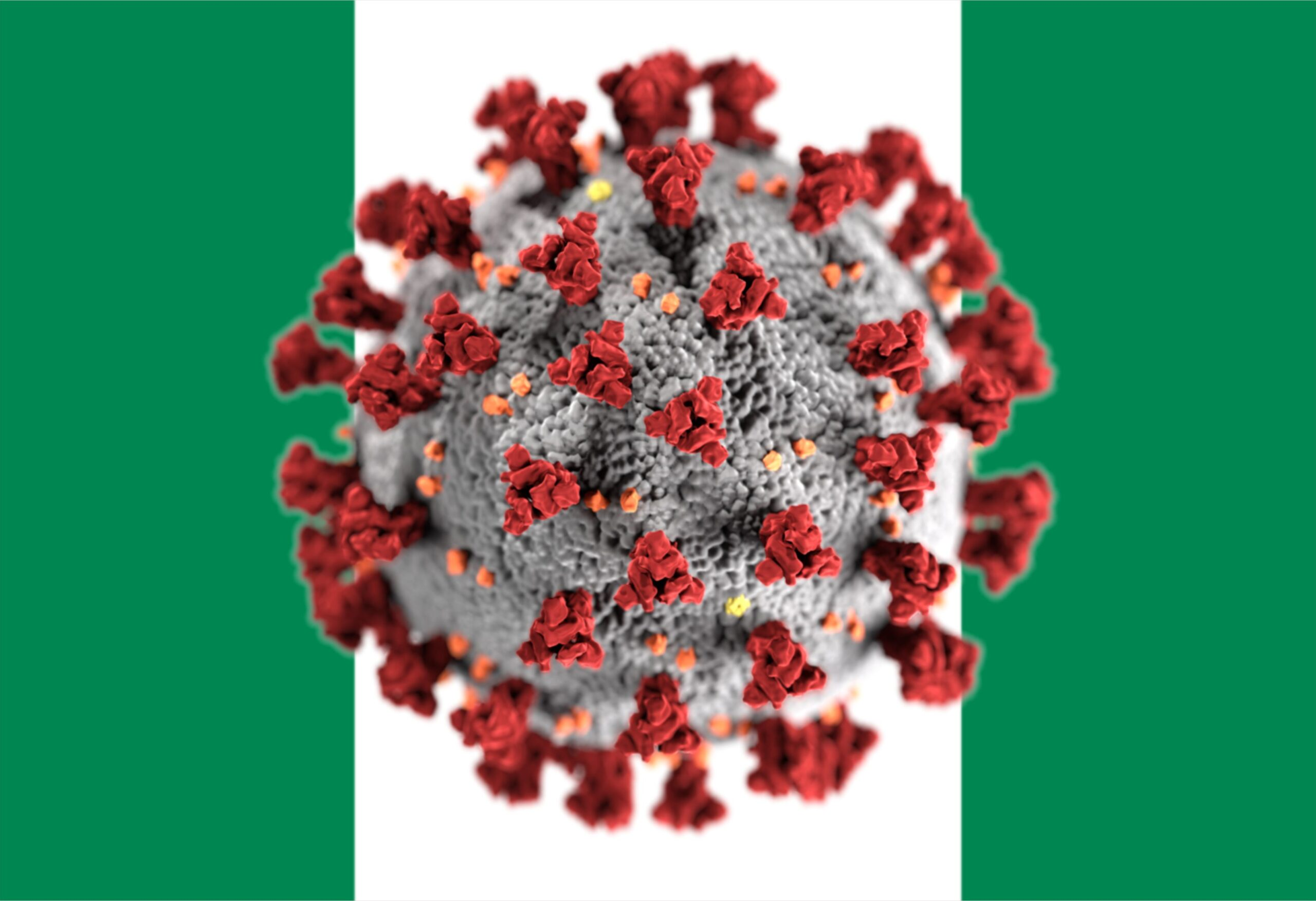 no coronavirus in Nigeria