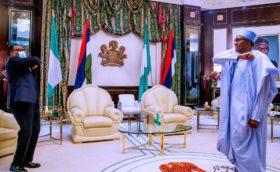 AfDB: Buhari, Adesina meet in Abuja
