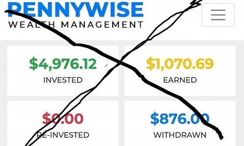 Pennywise wealth management