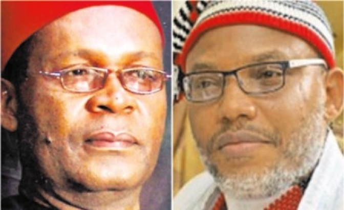 Nnamdi Kanu utterances is bringing Another Genocide to Igbos - Joe Igbokwe