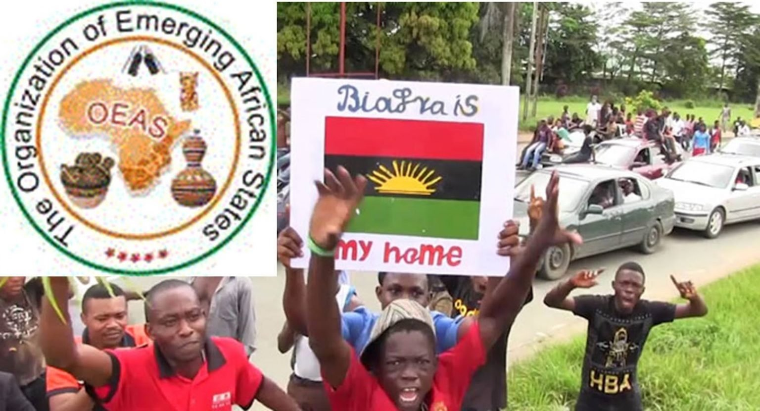 Biafra: OEAS gives Nigeria Government 90 days to conduct referendum, others