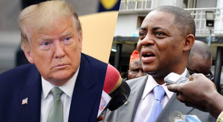 Fani-Kayode: Why APC doesn't want Trump re-elected