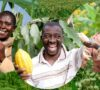 Starting a Farm in Nigeria; What it Requires